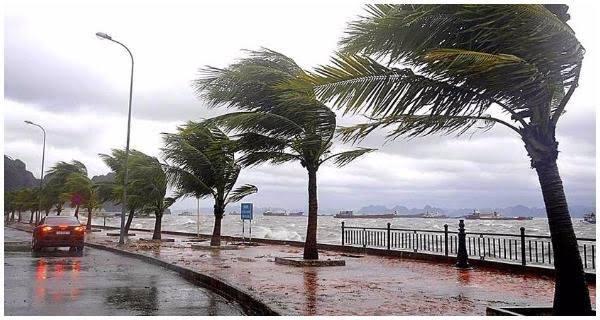 الأرصاد : تتوقع رياحا مثيرة للأتربة وأمطارا رعدية على مناطق بالوجه البحرى غدا