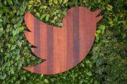 تويتر يستطلع آراء الناس حول سياسة التوثيق الجديدة