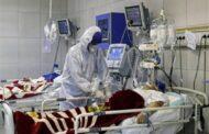 شمال سيناء : تسجيل 9 حالات شفاء وحالة وفاة واحدة بفيروس كورونا