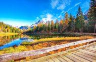 أبرز النصائح عند السفر في فصل الخريف